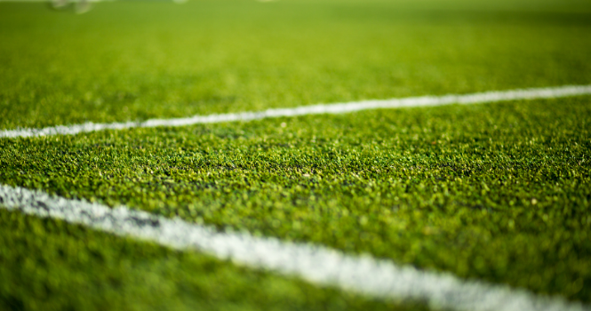 Pitch Licences For Season 2021-2022