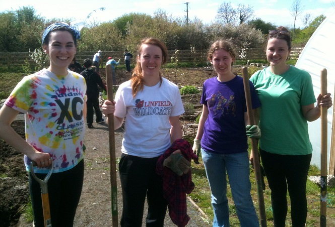 Ballinfoile Mór Community Organic Garden will reopen this Saturday