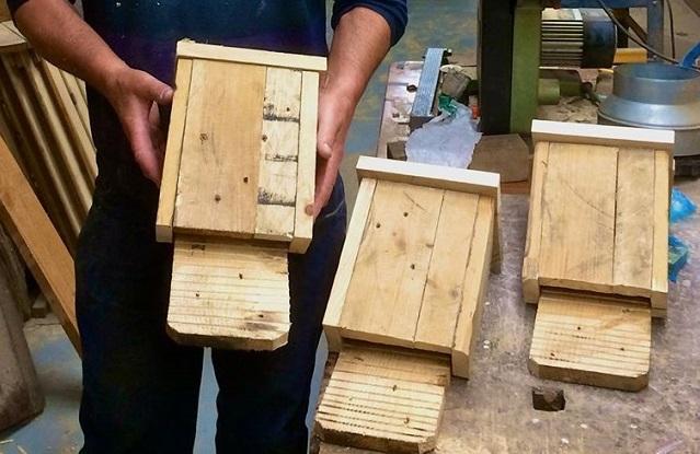 Make Your Own Bat Box workshop